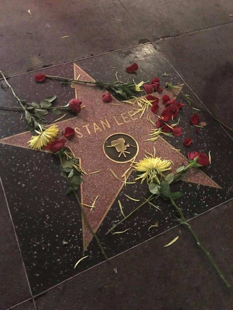 Flowers left by David Pepose on Stan Lee's star on the Hollywood Walk of Fame
